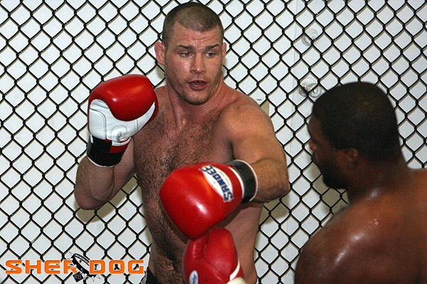 Mike Bisping and Rampage Jackson sparring with Sandee gloves